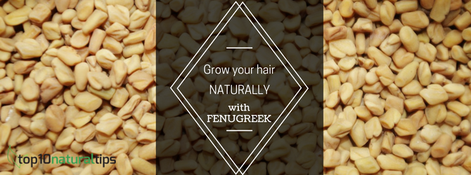 fenugreek for hair growth naturally