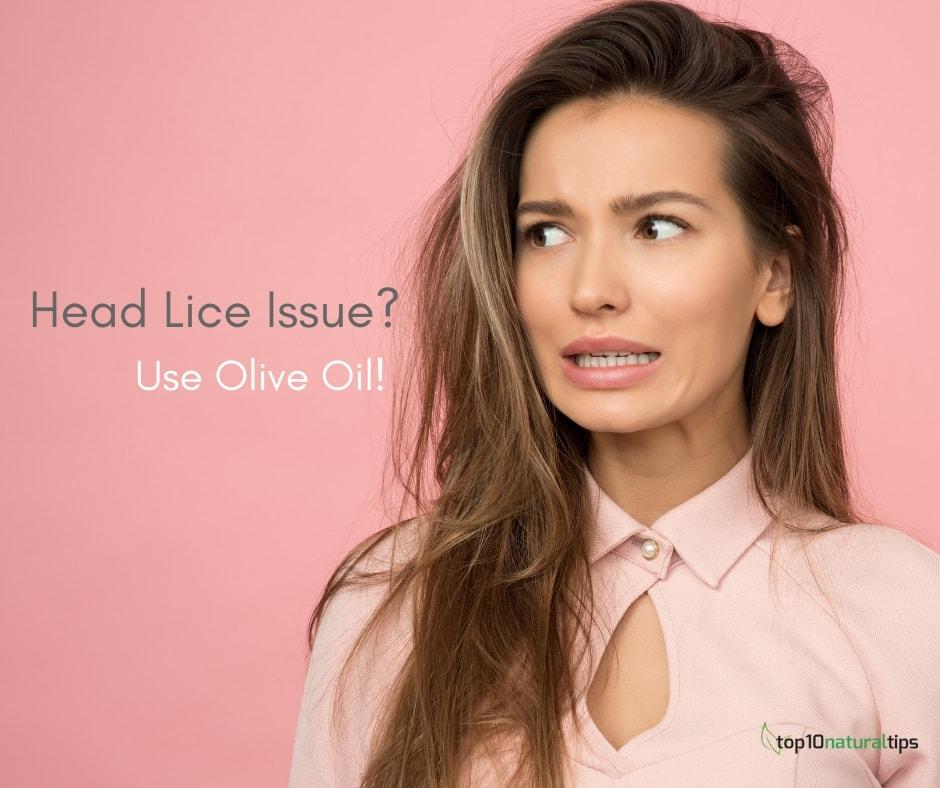 remove head lice with olive oil